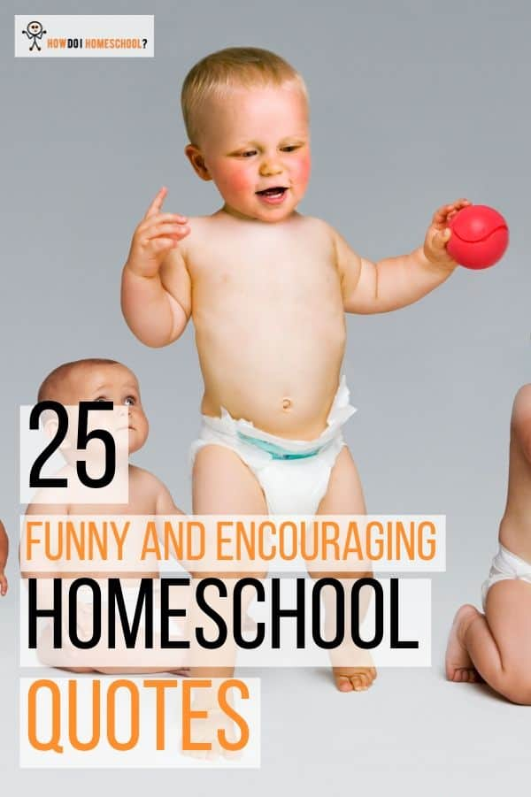 25 Funny and Encouraging Home Education Quotes
