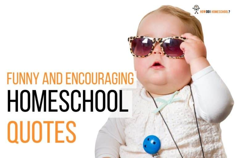 Funny and Encouraging Homeschool Quotes