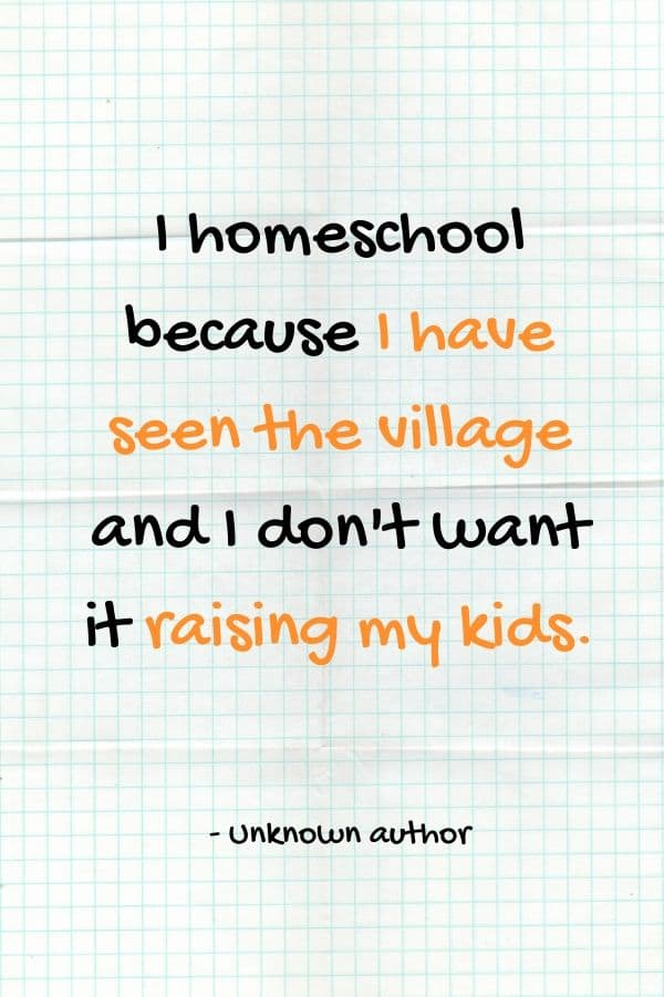 I homeschool because I have seen the village and I don't want it raising my kids. #homeschoolquotes