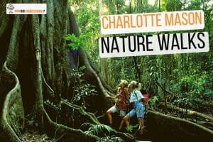 How to Include Charlotte Mason Nature Walks in Your Homeschool