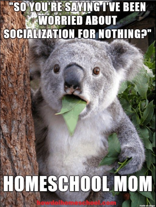 Home education meme about socialization