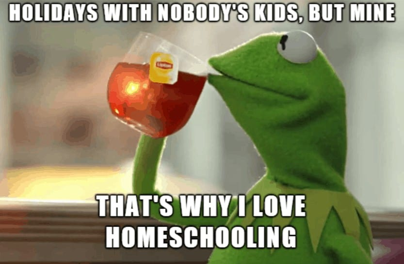 Meme about having holidays when everyone else is at school - homeschool life.