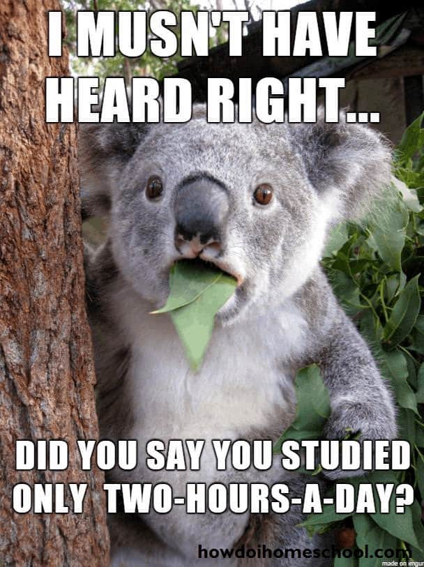 Homeschool meme about my homeschool experience saying I mustn't have heard you right...did you say you studied only two hours a day? #homeschool #howdoihomeschool