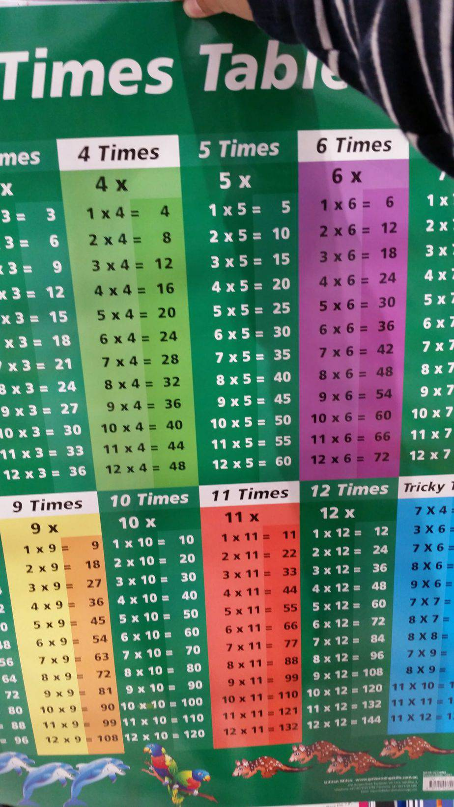 These times table posters provide colorful decorations for your homeschool room. They almost make you want to learn your mathematics!
