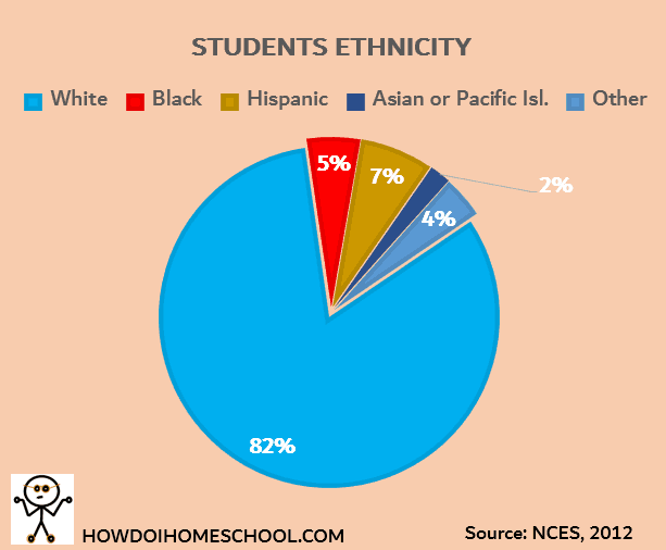 Ethnic Makeup of Homeschoolers in the United States. Homeschooling Facts and Statistics Graph. #homeschoolingfacts #homeschoolingstatistics #ethnicity