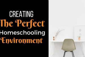 Creating the Perfect Homeschooling Environment