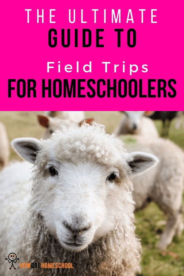 The Ultimate Guide to Field Trips for #Homeschoolers. #fieldtrips #excursions