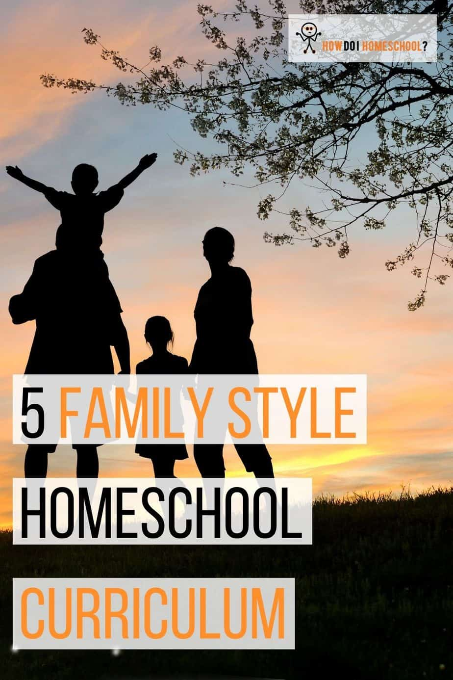 Want a family style homeschool curriculum for your large family_ These are five curriculum choices you'll love. #familystylehomeschoolcurriculum